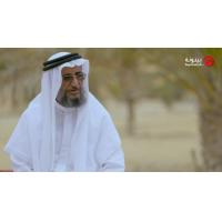 Al Mawared EP 11