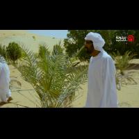 Al Mawared EP 12